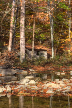 Captured Solitude - McCormick's Creek State Park