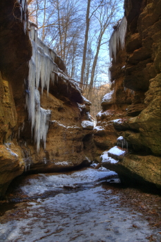 Captured Solitude - Turkey Run State Park - Icy Canyon